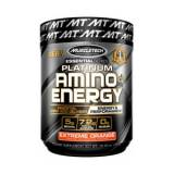Platinum Amino + Energy 290gr Muscletech