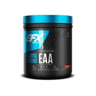 Training Ground EAA 123 gr EFX