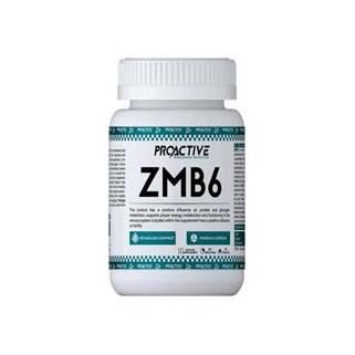 ProActive ZMB6 90Tab